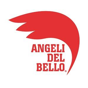 Fondazione Angeli del Bello Onlus