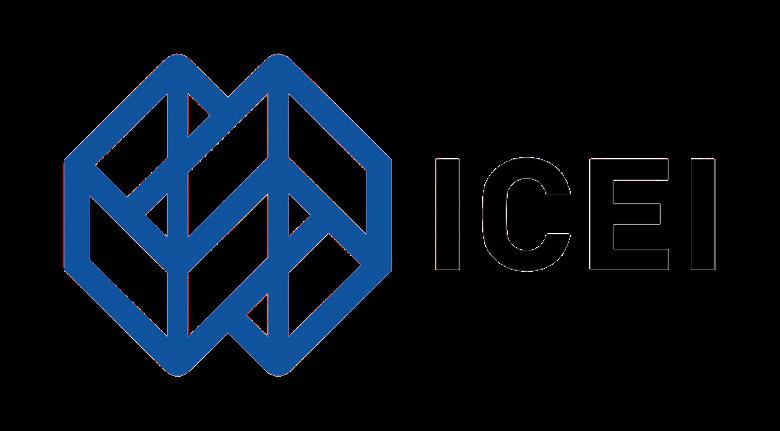 ICEI - Istituto Cooperazione Economica Internazionale