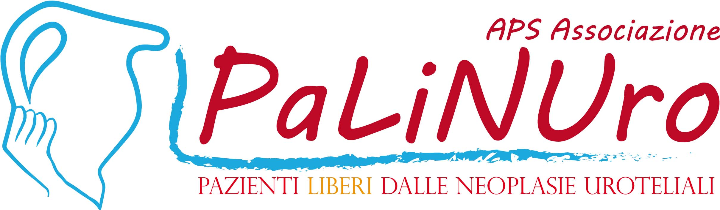 APS Associazione PaLiNUro
